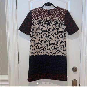 Stylish mini shirt dress premium quality luxurious